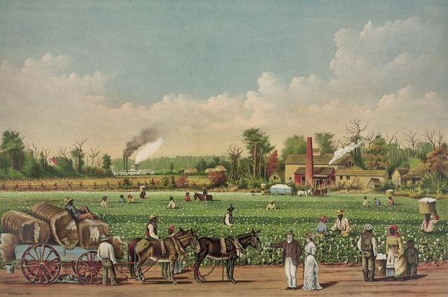 Cotton_plantation_on_the_Mississippi,_1884_(cropped).jpg